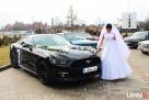 Czarny Ford Mustang do wynajęcia do Ślubu! - 1
