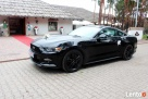 Auto do Ślubu! Czarny Ford Mustang Gorzów Wielkopolski