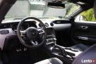 Biały Mustang do Ślubu GT! Najnowszy model - 5