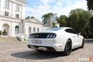 Biały Mustang do Ślubu GT! Najnowszy model - 3