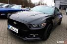 Auto do Ślubu! Mustang! - 3