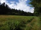 Działka rolna koło Rabki Zdrój - 2
