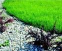 Obrzeże chodnikowe OPTI BORD obrzegowanie pod trawnik, kora - 7