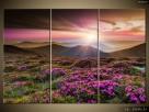 Piękny krajobraz, Canvas, Obraz na płótnie, dużo wzorów - 7