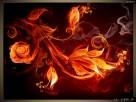 Płomienne kwiaty, OBRAZY, Canvas, Obraz na płótnie, sklep - 3