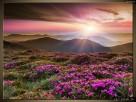 Piękny krajobraz, Canvas, Obraz na płótnie, dużo wzorów - 1
