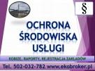 Wprowadzenie raportu, Kobize, cena tel, 502-032-782, Gdańsk - 2