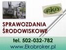 Wprowadzenie raportu, Kobize, cena tel, 502-032-782, Gdańsk - 4