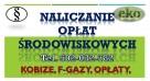 Założenie konta w bazie Kobize, cena tel. 502-032-782 - 2