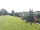 uslugi ogrodnicze - 4