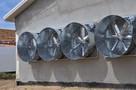 system chłodzący pad cooling obiekty inwentarskie - 2