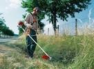 usługi ogrodnicze od A do Z