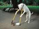 Tanie sprzątanie