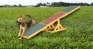 Huśtawka, równoważnia zręcznościowa dla psów - 5