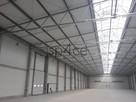 Hala/Magazyn, 10 000 m², Mysłowice - TANIO / teraz - 2
