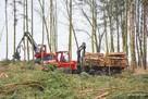 Wycinka Skup lasu na Pniu. Całe Podlaskie