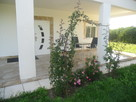 Dom z basenem w Oliva Nova - 2