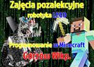 Kursy pozalekcyjne z robotami Lego i Minecraft- Gorzów Wlkp. - 4