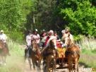 Jazda konna, przejażdżki bryczkami, Wolsztyn - Stary Widzim Wolsztyn