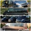 Przewóz osób, WŁOCŁAWEK, Transport,, Holandia, Belgia, Niemcy - 2