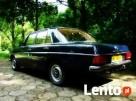 Klasykiem do ślubu-zabytkowy mercedes z poł lat 70-tych XXw - 3