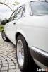 Biały Jaguar do ślubu Atrakcyjna cena, wolne terminy - 6