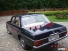 Klasyczne auta do ślubu zabytkowe mercedesy z lat 50-60-70 - 6