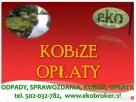 Kobize 2015, Kobize 2016, raport, obliczenia, wykaz, cena, Kraków