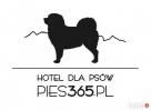 hotel dla psów Bydgoszcz, Osielsko, Koronowo, Fordon Bydgoszcz
