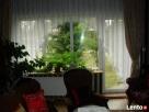 Dom z 2004r pow. 150 m²pod działalność 110m, Fasty - 4