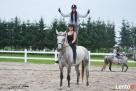 Obozy Jeździeckie ,obozy konne, wakacje w siodle, ferie w siod - 8