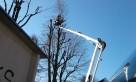 Wycinka drzew zwyżka podnośnik koszowy rębak - 1