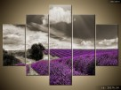 Lawendowy widok, OBRAZY, obraz na płótnie, Canvas, prezent - 2