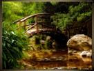 Japoński Ogród, OBRAZY, płótno Canvas, pomysł na prezent - 5
