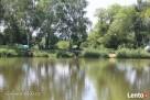 Pilne Milicz - piękna działka przy zalewie Sławoszowice - 2