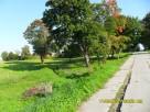 Sprzedam działkę  0,3ha, oraz 0,6 ha ,7 km. od Bartoszyc - 2