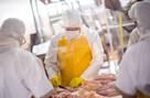 Segregowanie i pakowanie mięsa - Holandia