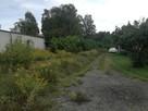 Sprzedam działkę inwestycyjną w Andrespolu - 3