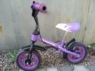 Rowerek-biegacz - 2