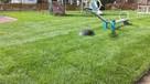 Trawa z rolki + kompleksowe zakładanie ogrodów Nawodnienie - 3