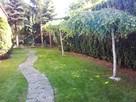 Trawa z rolki + kompleksowe zakładanie ogrodów Nawodnienie - 8