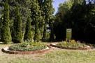Trawa z rolki + kompleksowe zakładanie ogrodów Nawodnienie - 6