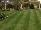 Trawa z rolki + kompleksowe zakładanie ogrodów Nawodnienie - 4