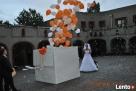 MAGVEL-ogromny prezent z balonami wypełnionymi helem Stargard Szczeciński