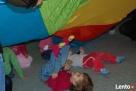Zajęcia dla dzieci od 1 do 6 lat - z muzyką na żywo