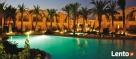 Sharm el Sheikh wypoczynek od 1580 zł !