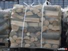 Drewno opałowe kominkowe : grab,dąb,buk,brzoza,sosna Nowa Dęba