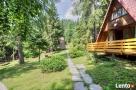 Domki Leśne Wisła - góry - blisko jezioro - las - 1