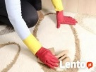Sierść wbita w dywany i tapicerkę? Piaseczno