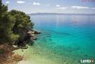 Chorwacja > Riwiera Makarska > Podgora – Apartament